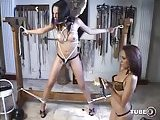Fetish act with a bound tranny