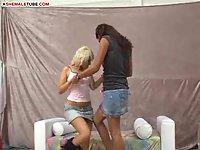 Shemale vs, Female Porn Bitches