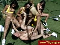 Transsexuals love outdoor gangbangs