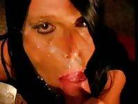 Amateur shemales facials and cumshots compilation