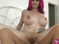 Busty shemale Kitty K picks up a client