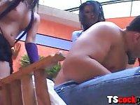 Horny shemale Adryana Suzuki anal 3some