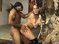 Submissive Tranny Gets Laid
